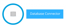 The New Database Connector in Mule 4