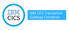 Introducing Anypoint Connector for IBM CICS Transaction Gateway