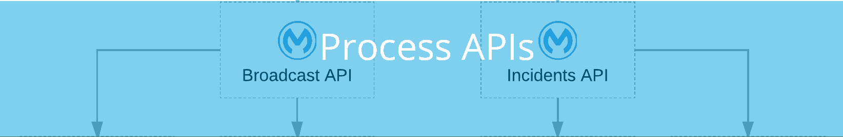 what is a process api
