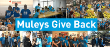 Muleys Give Back: MuleSoft's Global Month of Service